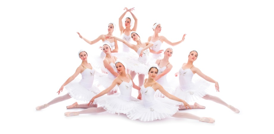 Swan Corps